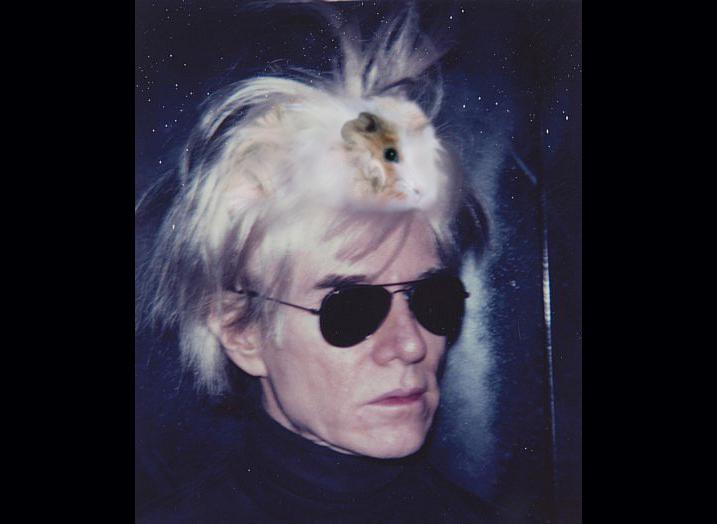 112_Pruik Warhol was cavia-2
